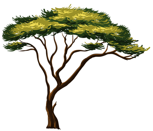 Tree removal clipart graphic transparent library Painted African Tree PNG Clipart Picture | Trees | Pinterest ... graphic transparent library