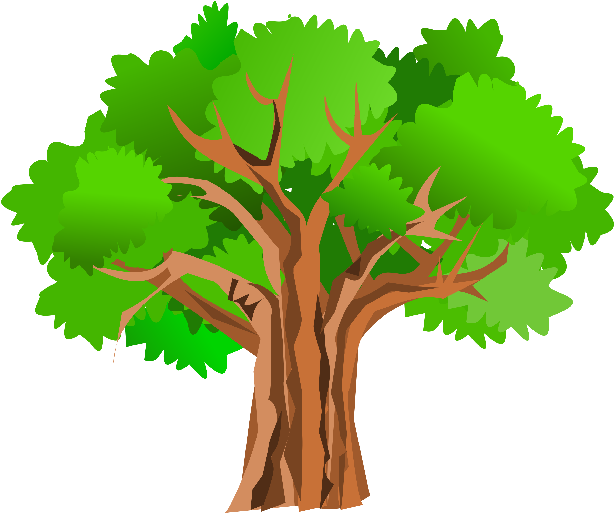 Acacia Tree Clipart at GetDrawings.com | Free for personal use ... picture freeuse library