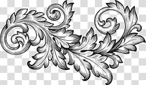 Acanthus clipart clip royalty free download Acanthus transparent background PNG cliparts free download | HiClipart clip royalty free download