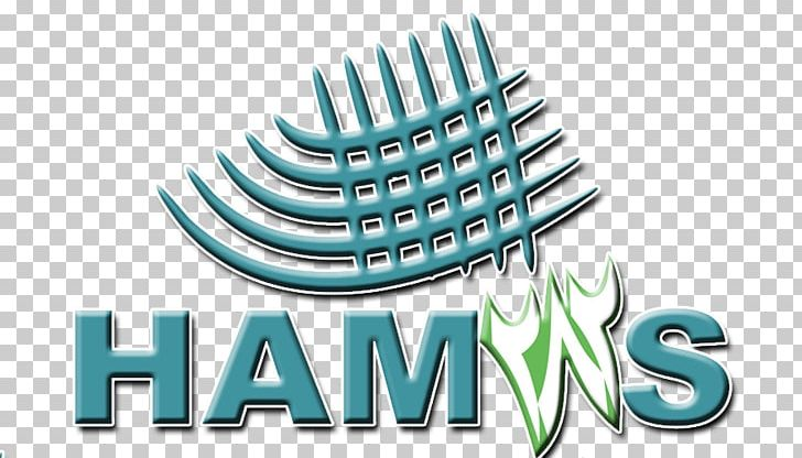 Accounting logo clipart graphic free Hamas Himpunan Mahasiswa Jurusan STEI Tazkia Accounting Logo PNG ... graphic free