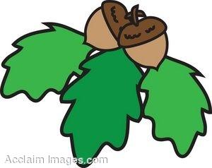 Acorn and oak leaf clipart clipart freeuse Oak Leaf Pictures | Free download best Oak Leaf Pictures on ... clipart freeuse