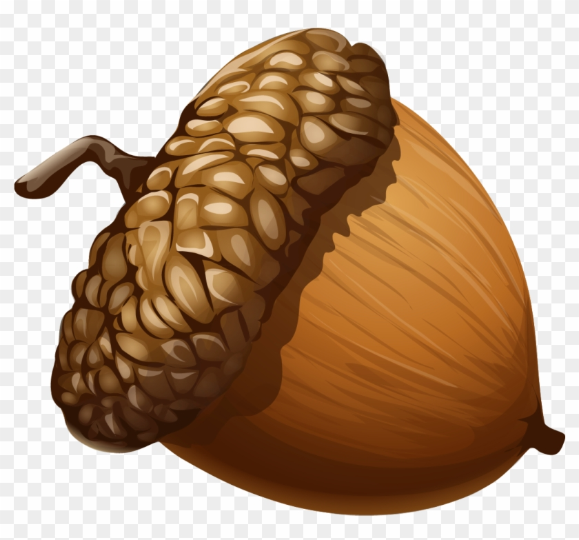 Woodland acorn clipart svg library Acorn Clipart 1 Nice Clip Art - Acorn Png - Free Transparent PNG ... svg library