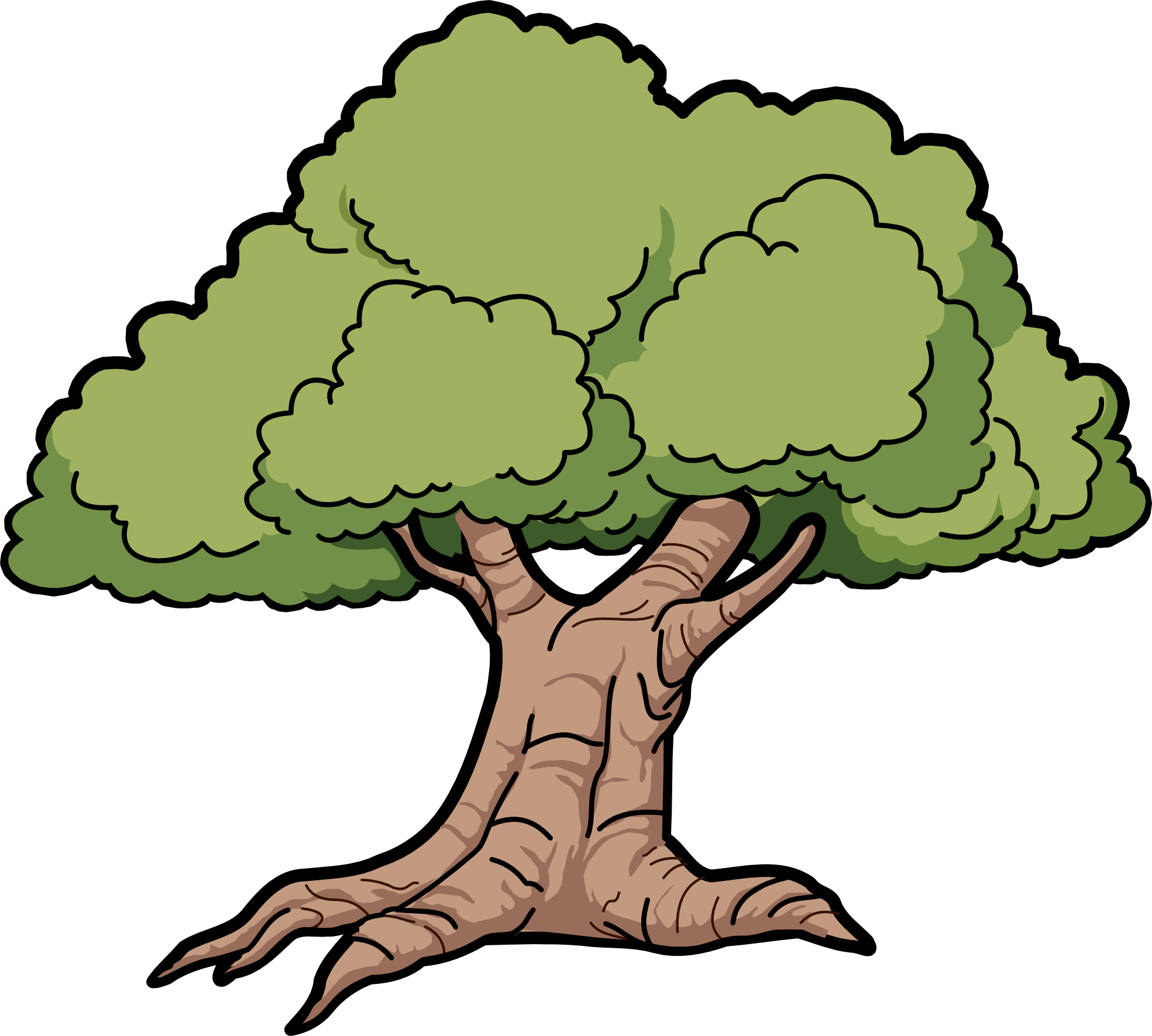 Large tree clipart png free Oak Tree Clipart (49+) Oak Tree Clipart Backgrounds png free