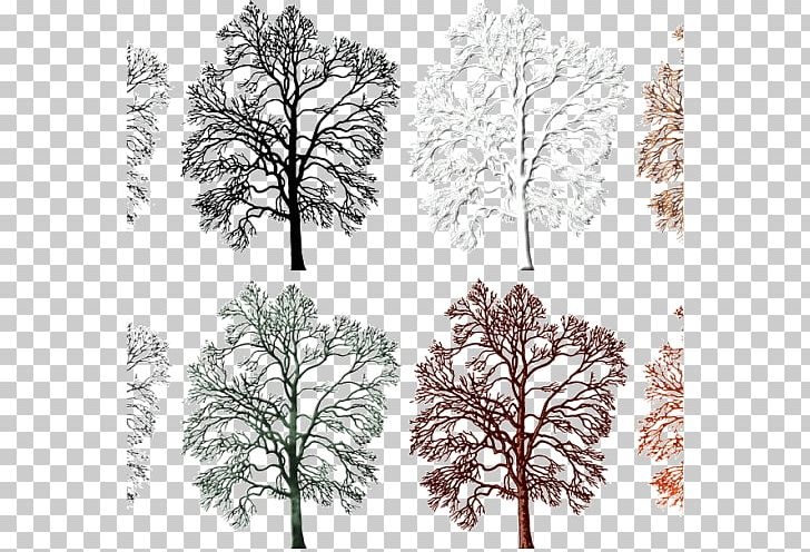 Acorns on twig clipart png black and white library Twig Leaf Acorn Tree PNG, Clipart, Acorn, Black And White, Branch ... png black and white library