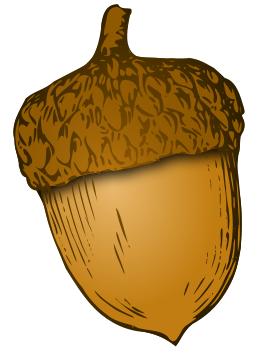 Acran clipart vector acorn clipart | fingerprint drawings | Acorn, Acorn image, Leaves vector vector