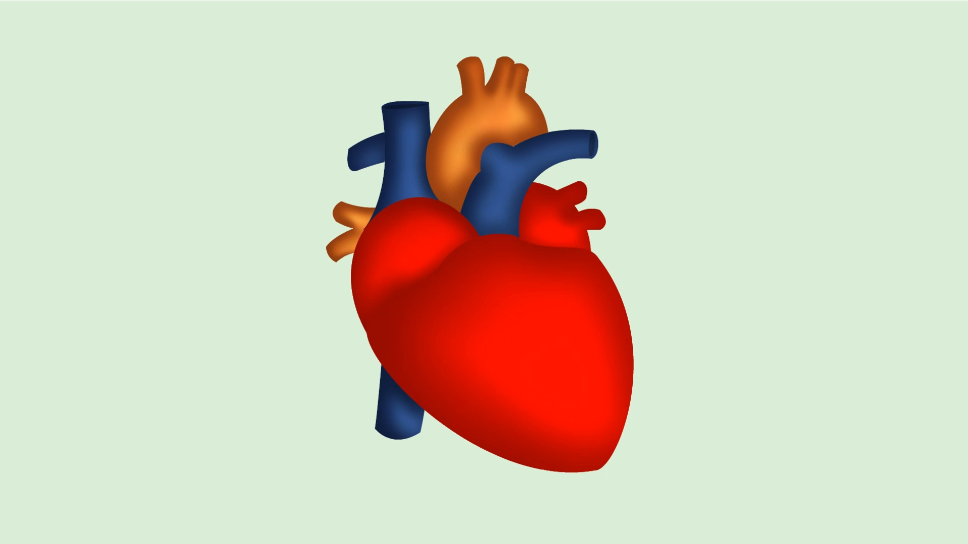 Whats inside the heart clipart clipart transparent download Real Heart Clipart | Free download best Real Heart Clipart on ... clipart transparent download