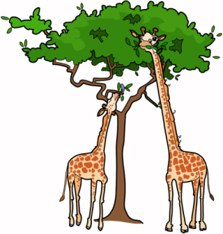Adaptations clipart clip art library library Adaptations - Clip Art Library clip art library library