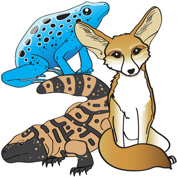 Adaptations clipart graphic free Animal Adaptations Clip Art Set graphic free