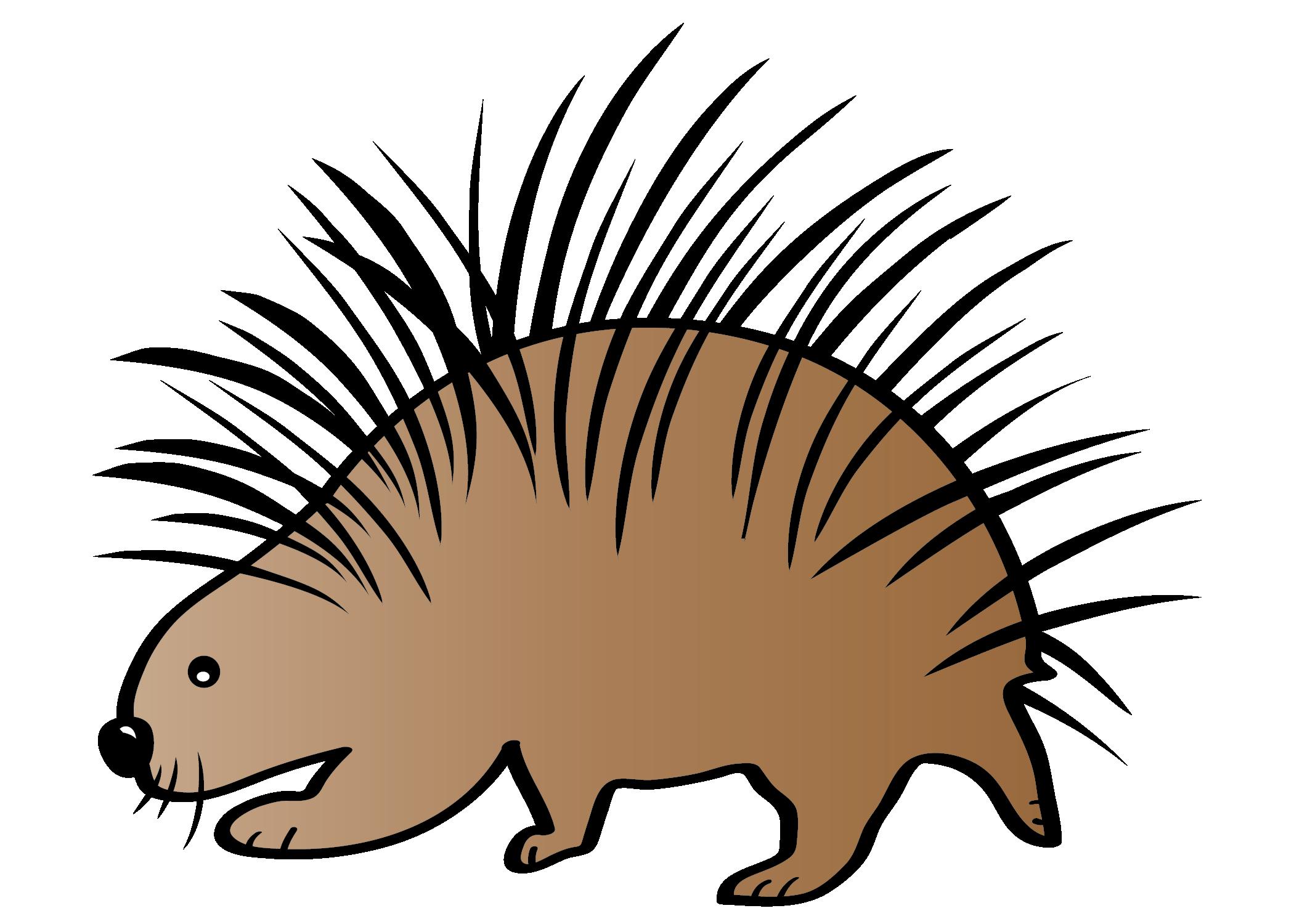 Adaptations clipart clip download Animal Adaptations Clip Art - SCIENCE clip download