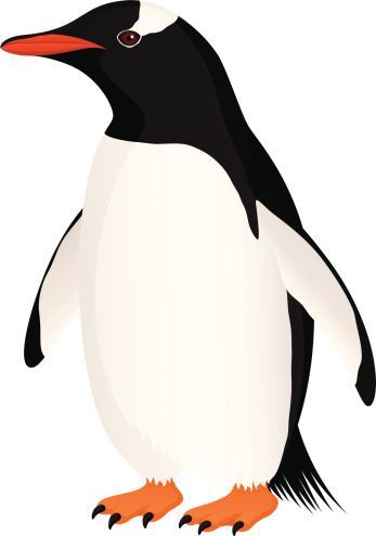Adeline penguin clipart banner library library Free Gentoo Penguin Cliparts, Download Free Clip Art, Free Clip Art ... banner library library