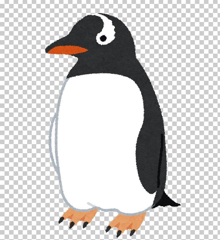 Adélie Penguin Bird Gentoo Penguin King Penguin PNG, Clipart, Adelie ... clip art royalty free stock