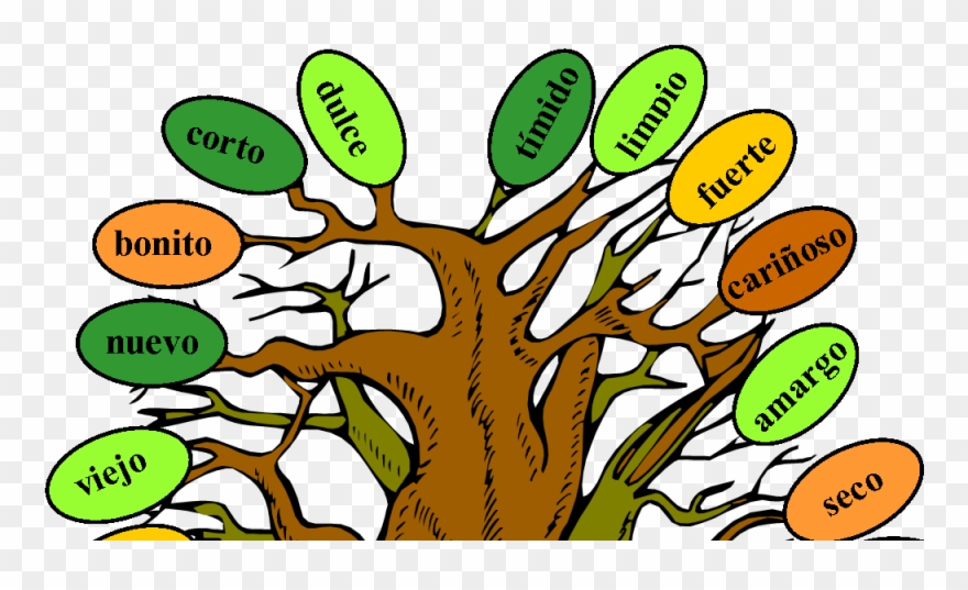 Adjectives clipart clip library stock Music And Spanish Fun Tree Of Adjectives - Adjetivos De Arbol ... clip library stock