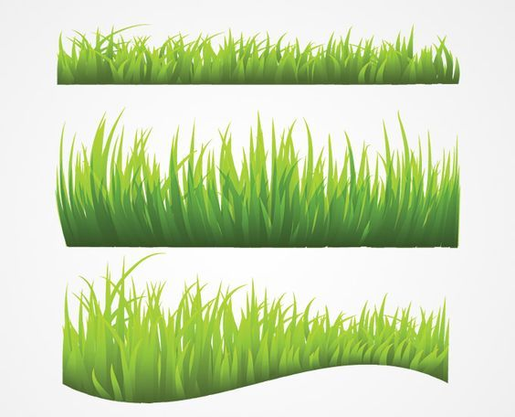 Adobe photoshop vector clipart svg download Grass Vector (Free) | Free Vector Archive: | Design in 2019 | Grass ... svg download