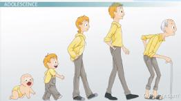 What Is Adolescence? - Definition, Stages & Characteristics - Video ... picture royalty free