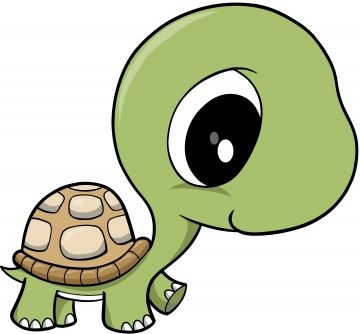 Adorable turtle clipart