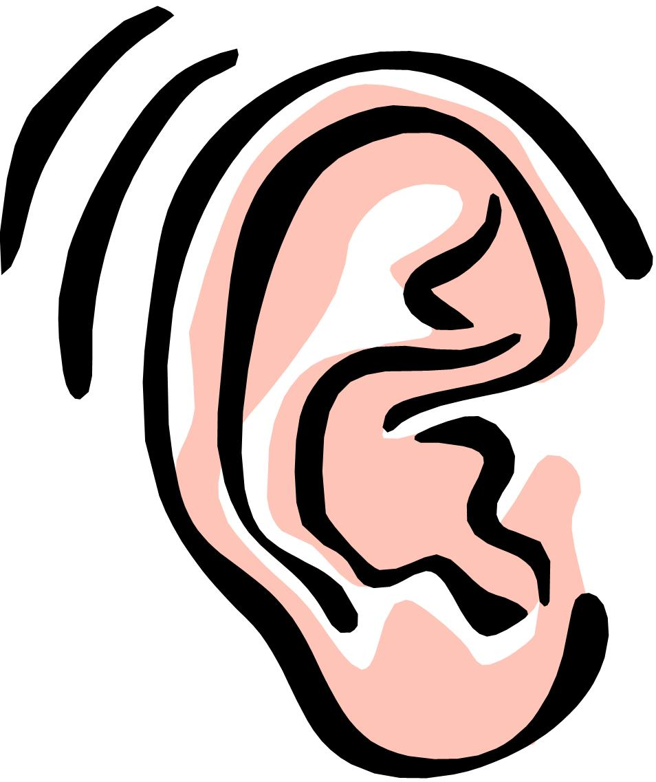 No voice clipart clipart freeuse stock Audiology - Ear Nose & Throat Care P.C., Somerville NJ clipart freeuse stock