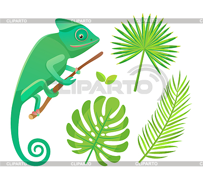 Adult male exotic clipart clip stock Chameleon | Stock Photos and Vektor EPS Clipart | CLIPARTO clip stock