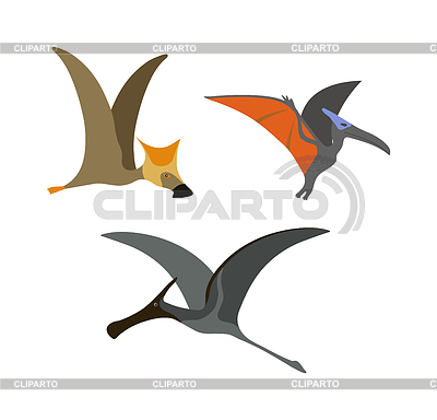 Adult pterodactyl clipart clip art black and white download Pterodactyl   Stock Photos and Vektor EPS Clipart   CLIPARTO clip art black and white download