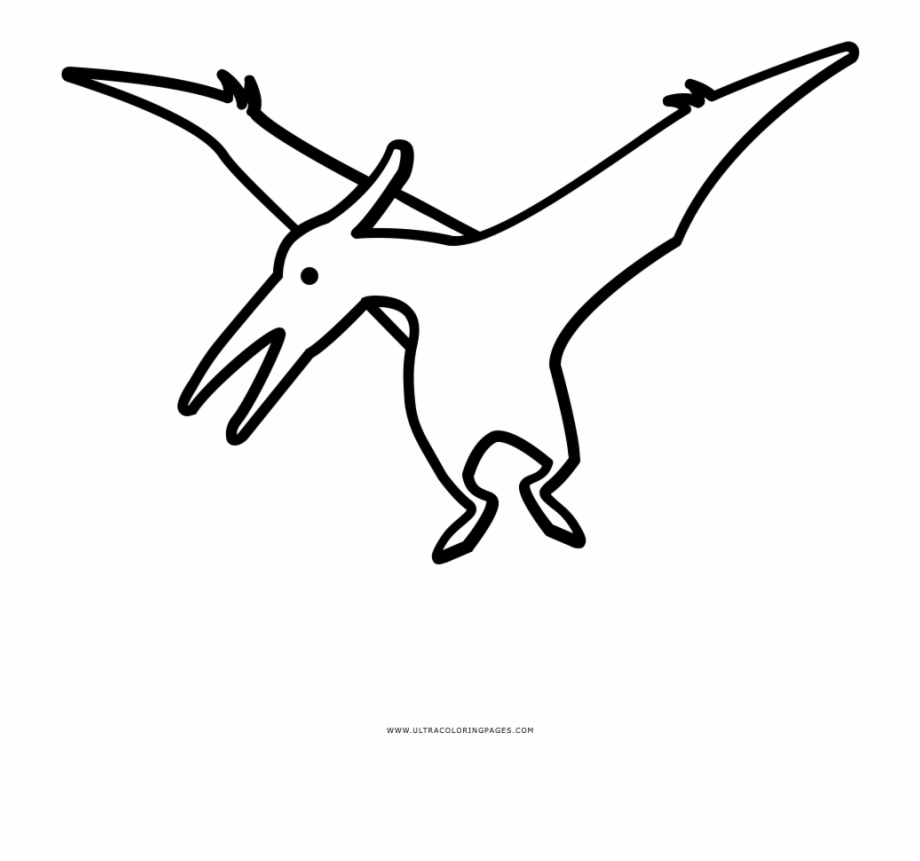 Adult pterodactyl clipart image black and white download Trendy Pterodactyl Coloring Page Ultra Pages Free Dinosaur - Line ... image black and white download
