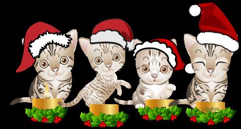 1.Advent Bild katzen-0018.png kostenlos auf deiner Homepage ... clipart stock