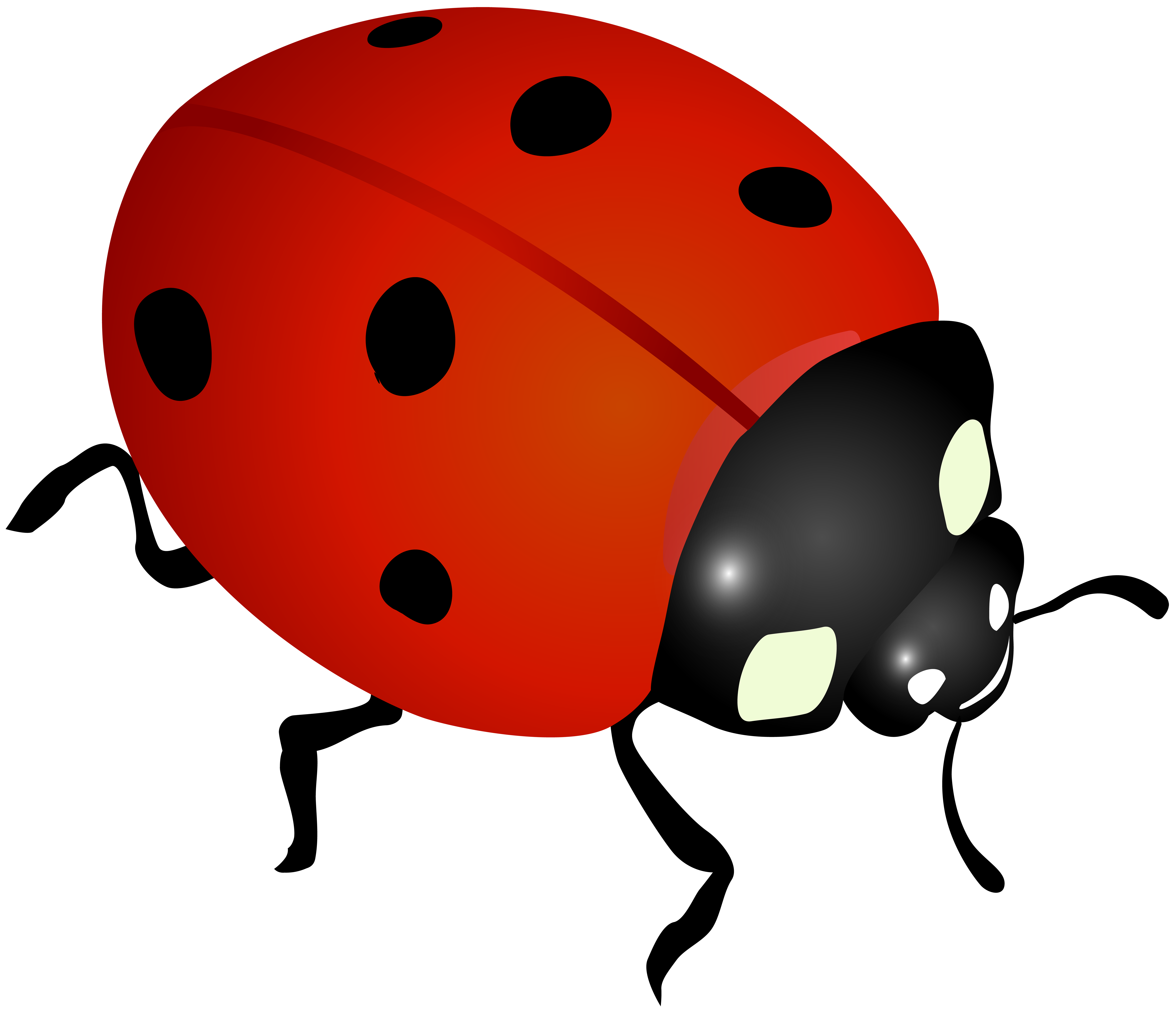 Ladybug pictures clipart svg transparent library Lady bug clipart clipart images gallery for free download | MyReal ... svg transparent library