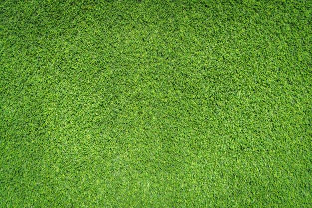 Aerial grass clipart clip art transparent download Grass Vectors, Photos and PSD files | Free Download clip art transparent download