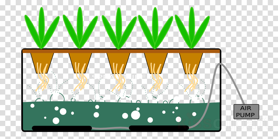 Aeroponics clipart clip royalty free stock transparent png image & clipart free download clip royalty free stock