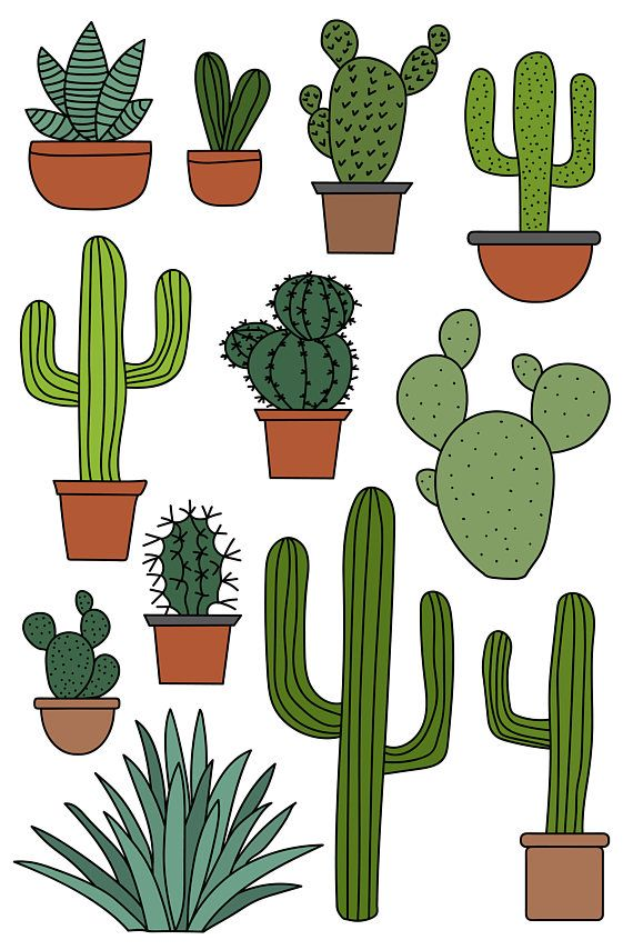 Aesthetic cactus clipart clip black and white download Cactus Clipart Set, Hand Drawn Clip Art Illustrations of Desert ... clip black and white download