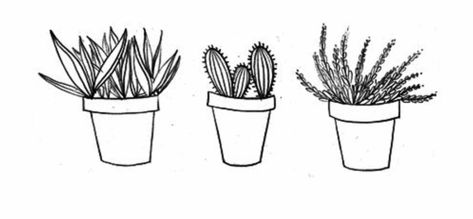 Aesthetic cactus clipart svg royalty free library Drawing Cactus Aesthetic Transparent Clipart Free Download - Proud ... svg royalty free library