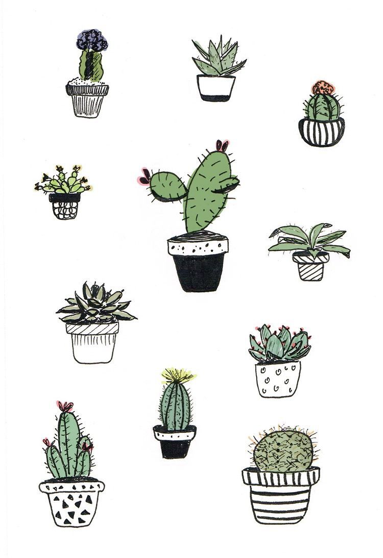 Aesthetic cactus clipart graphic library download Pin by Becca Hummel on aesthetics | Cactus drawing, Cactus doodle ... graphic library download