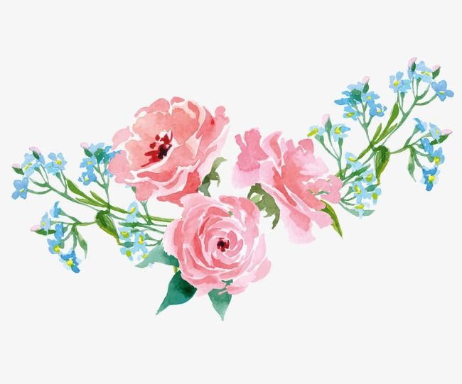 Aesthetic flower clipart clipart free download Hand Painted Flowers Plants | SkeTchPad in 2019 | Plant drawing ... clipart free download