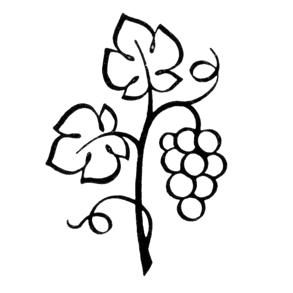 Grape leaf clipart black and white image free The True Vine | Theworldasiknowit\'s Blog image free
