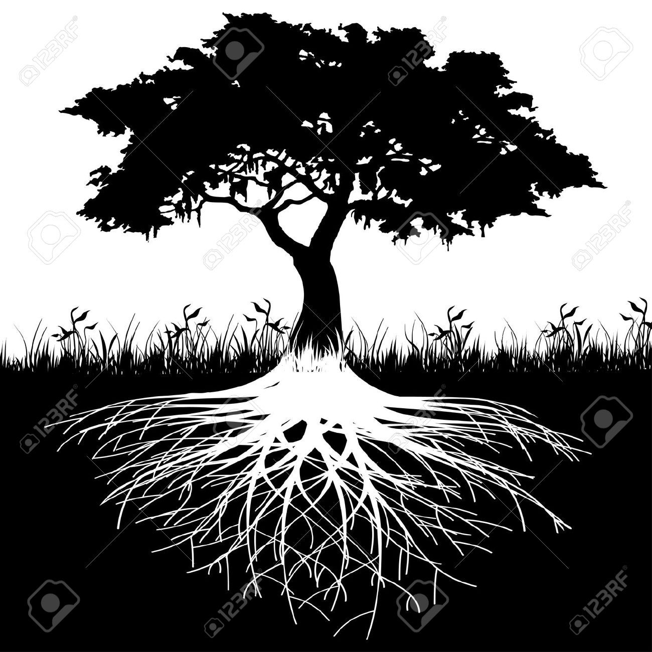 African american roots clipart graphic transparent stock tree of life with roots clipart | Trees | Tree roots, Tree ... graphic transparent stock