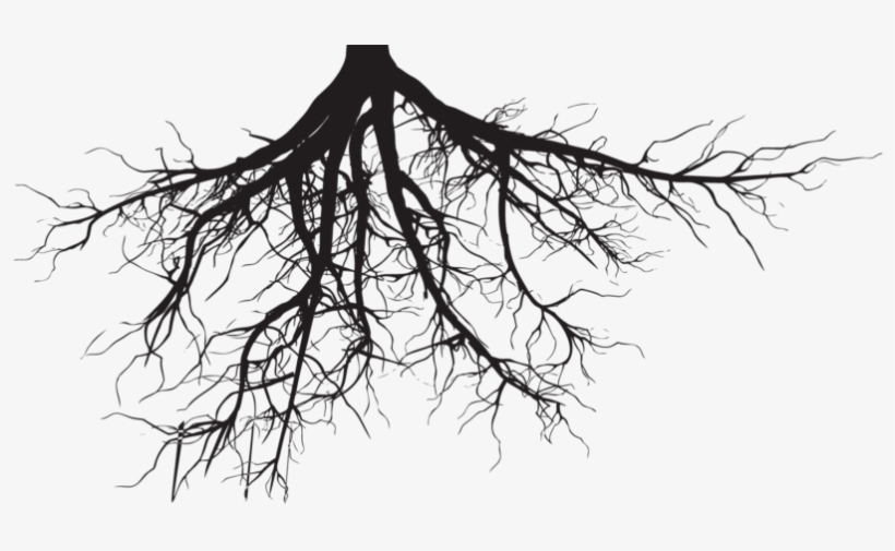 African american roots clipart clipart freeuse library Soil And Roots Png Clipart Black And White Download - Tree Roots ... clipart freeuse library