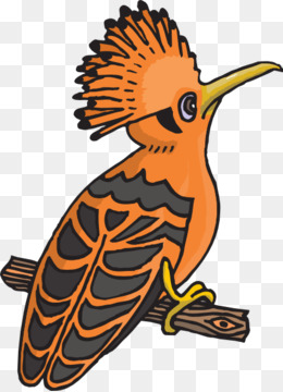 African birds clipart svg freeuse download Free download Bird Wing png. svg freeuse download