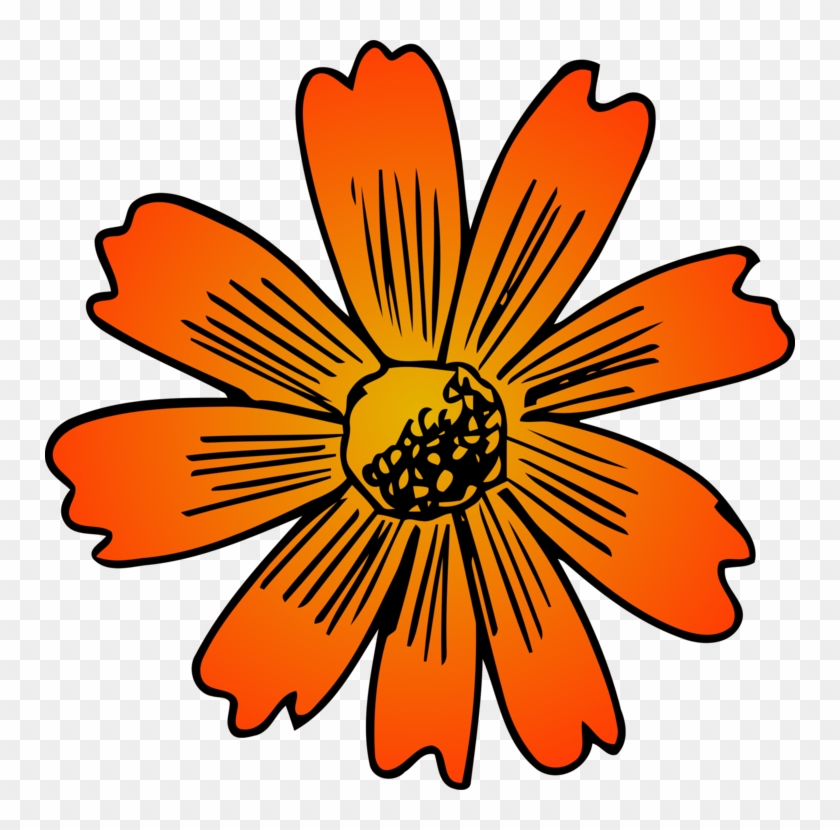 African daisy clipart vector stock Sunflower Clipart Rose - African Daisy, HD Png Download - 750x750 ... vector stock