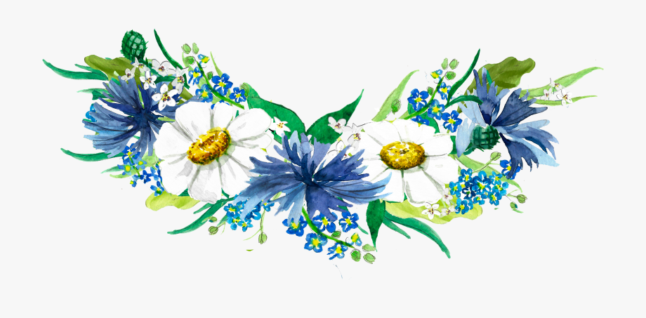 African daisy clipart banner black and white Watercolor Wreath Made Of The Bluebottle, Margaret - African Daisy ... banner black and white