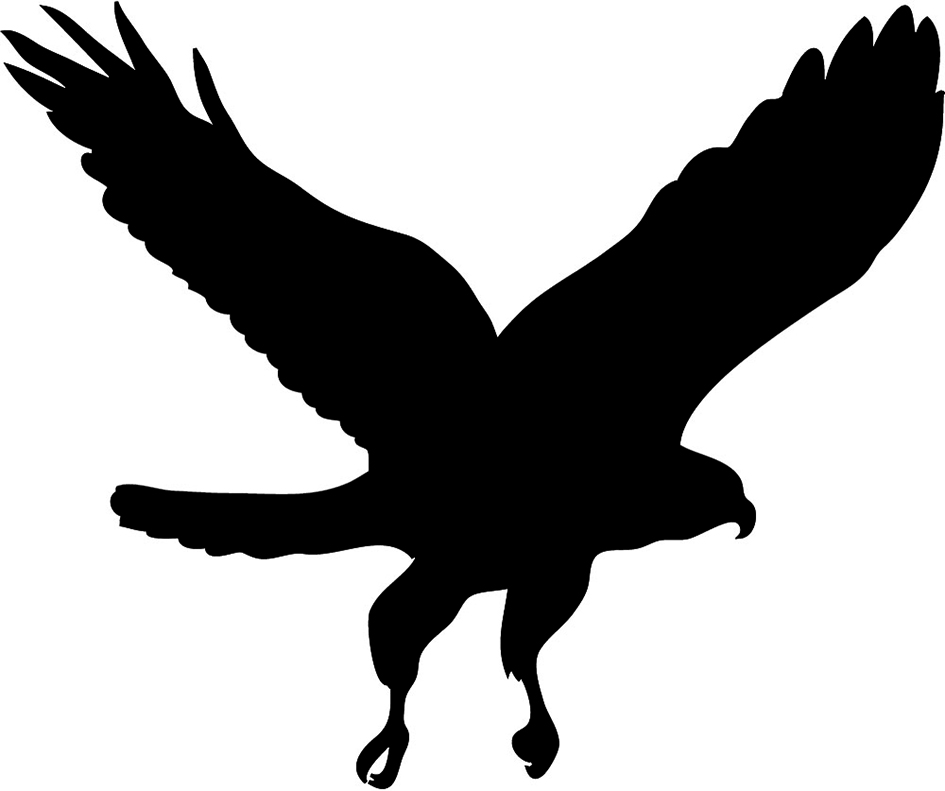 Hawk flying with wings up clipart jpg transparent stock Bird Silhouettes jpg transparent stock