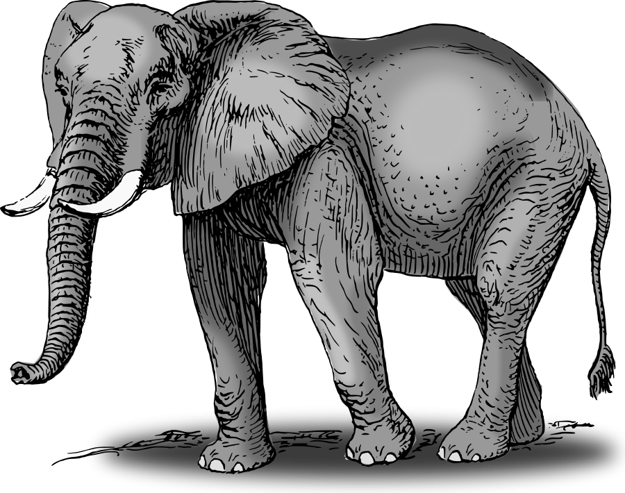 African elephant clipart pictures royalty free library Large size Colored Elephant Clipart vector | Just for Lons ... royalty free library