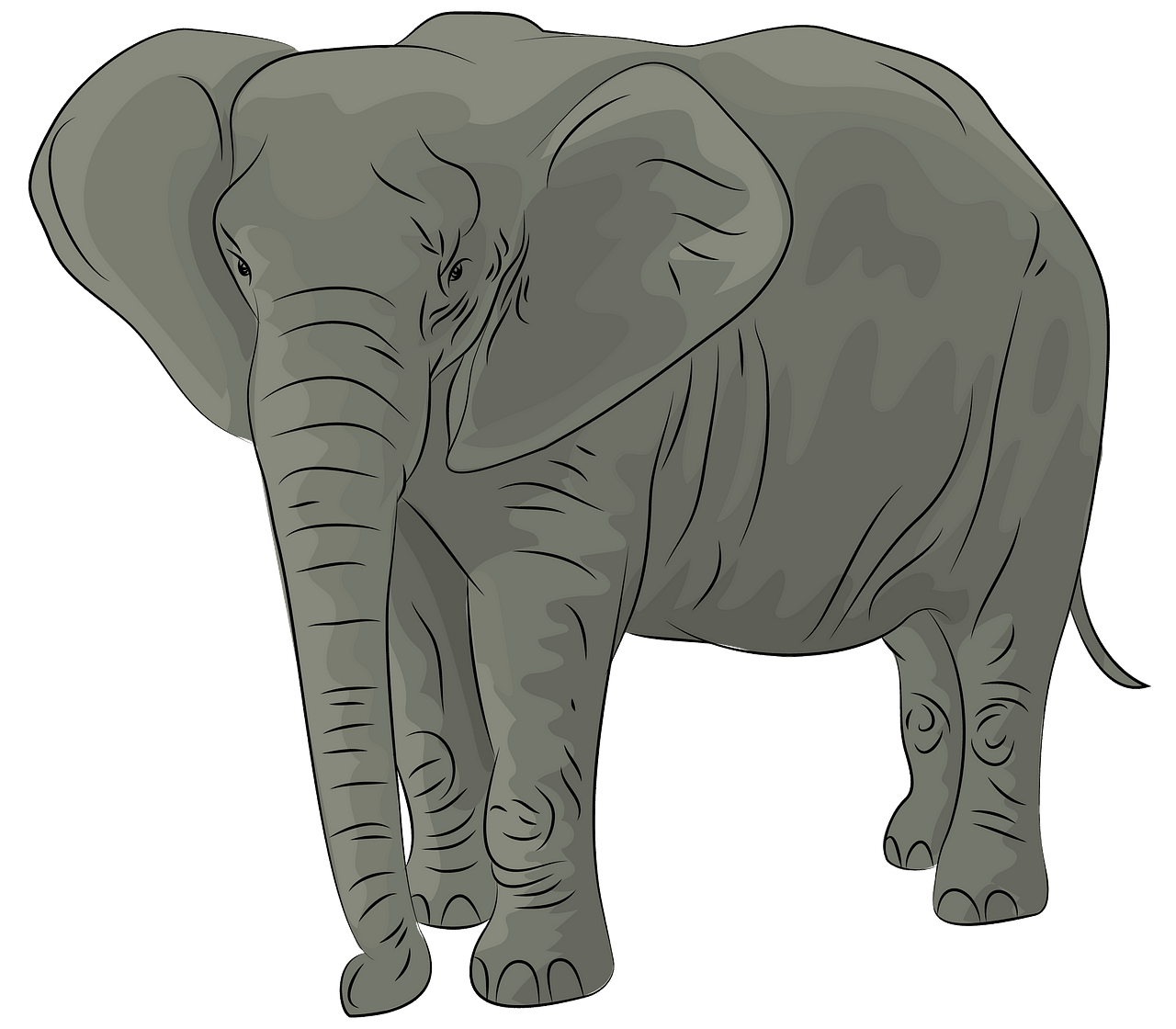 African elephant clipart pictures png black and white download African Elephant clipart. Free download. | Creazilla png black and white download