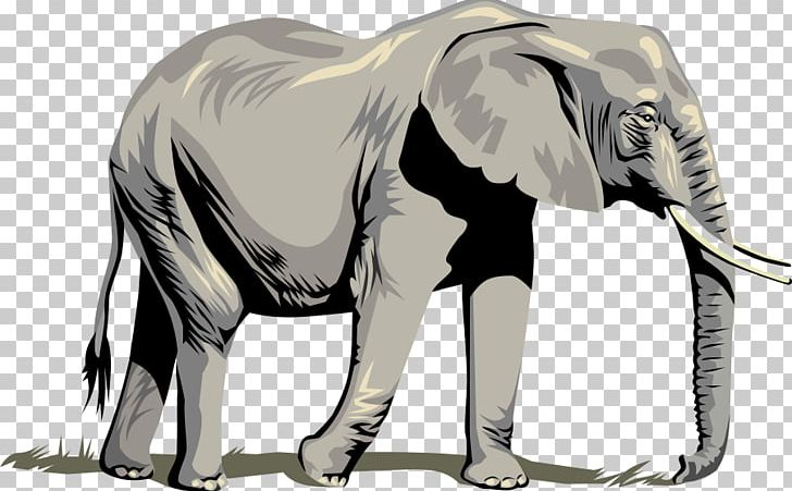 African elephant clipart pictures