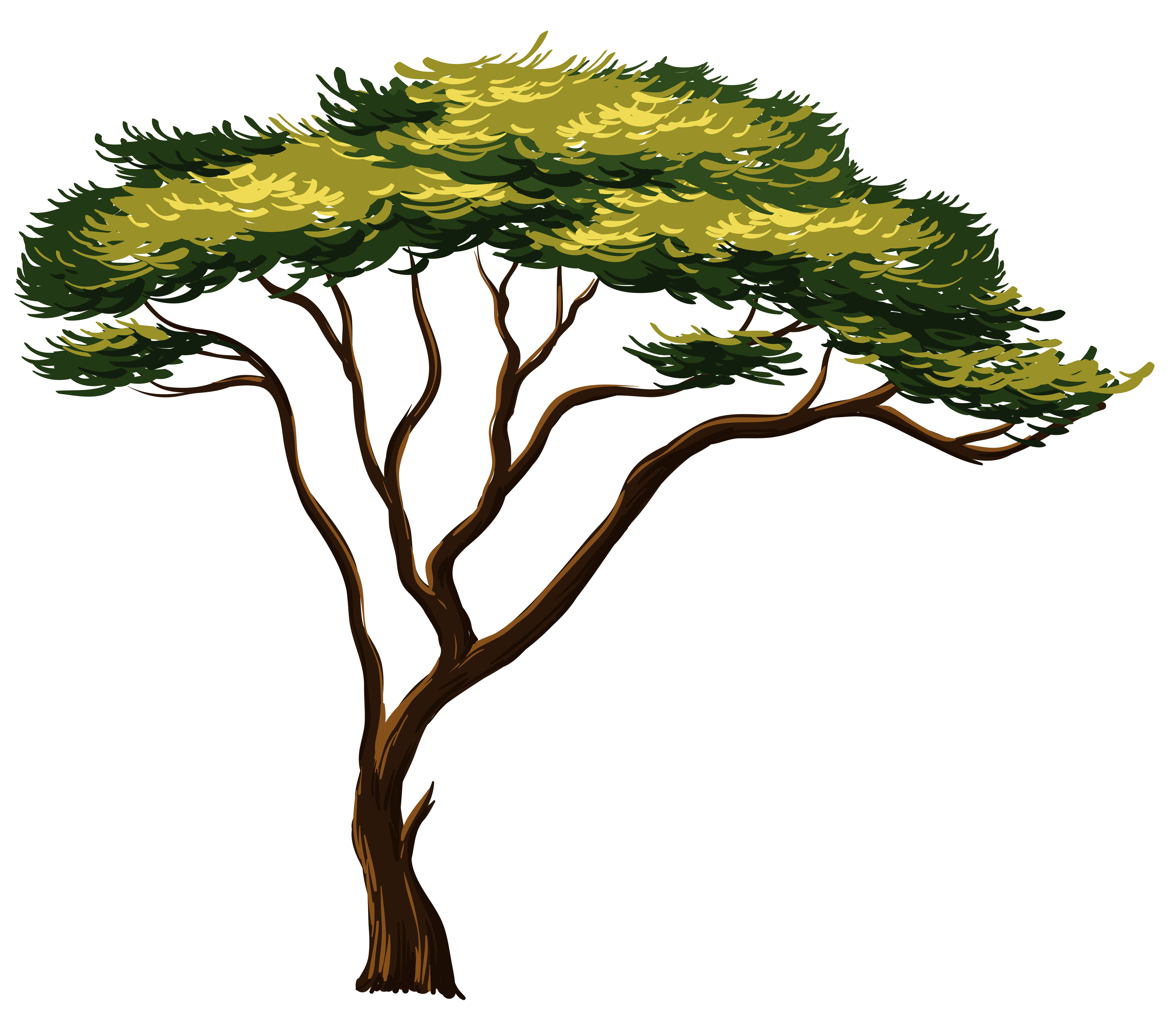 Trees lake house clipart clip royalty free african-tree-clipart-1.jpg (4792×4120) | tree art and illustration ... clip royalty free