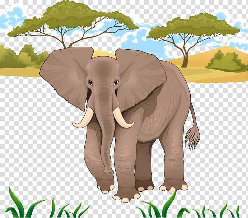 African jungle clipart svg free stock African elephant illustration, Jungle Elephant transparent ... svg free stock