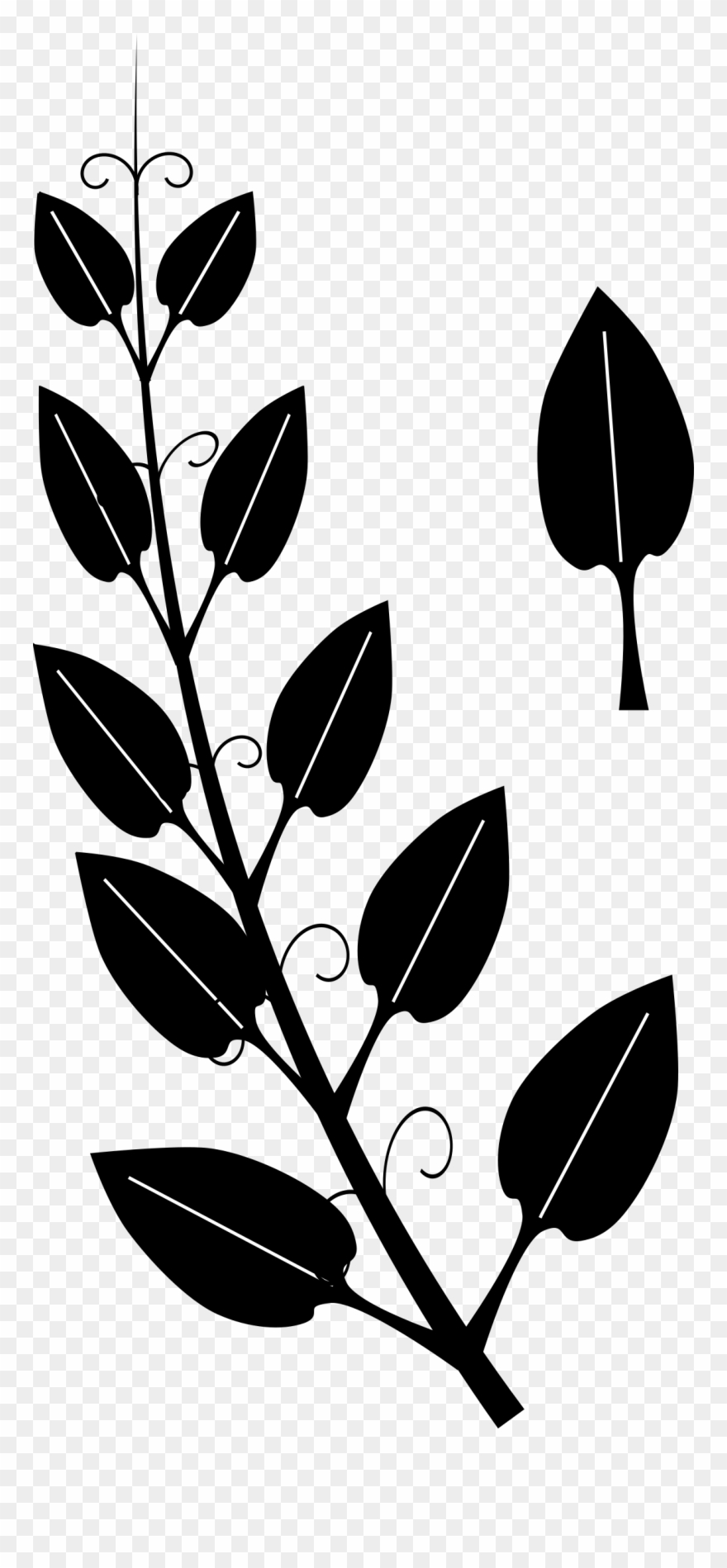 African jungle vine clipart jpg transparent stock Collection Of Leaf Vine High Quality - Black And White Silhouette ... jpg transparent stock