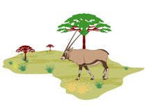 African lamd clipart clipart Search Results for gemsbok - Clip Art - Pictures - Graphics ... clipart