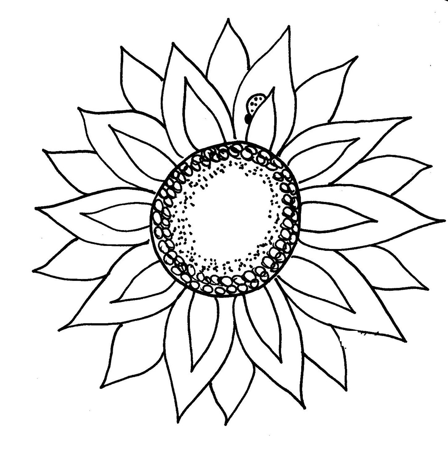 African sunflowers clipart png royalty free stock Free Black Sunflower Cliparts, Download Free Clip Art, Free Clip Art ... png royalty free stock