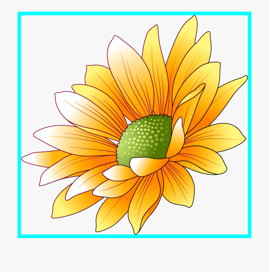 African sunflowers clipart clipart stock Sun Flower Sunflower Frame Png Unbelievable Art Colorful - African ... clipart stock