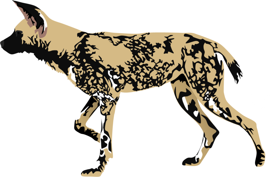 Feral dog clipart clip transparent library African Wild Dog by AdamZT2 on DeviantArt clip transparent library