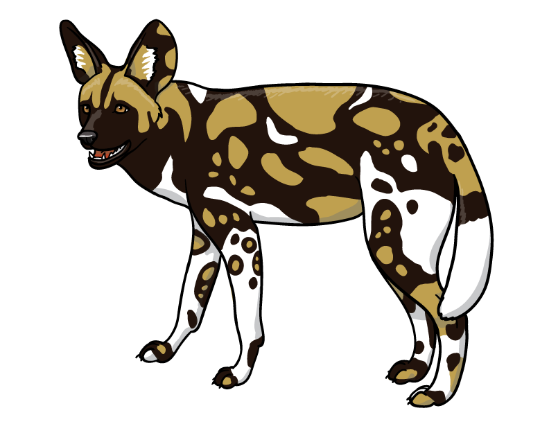 African Wild Dog Clipart at GetDrawings.com | Free for personal use ... jpg royalty free stock