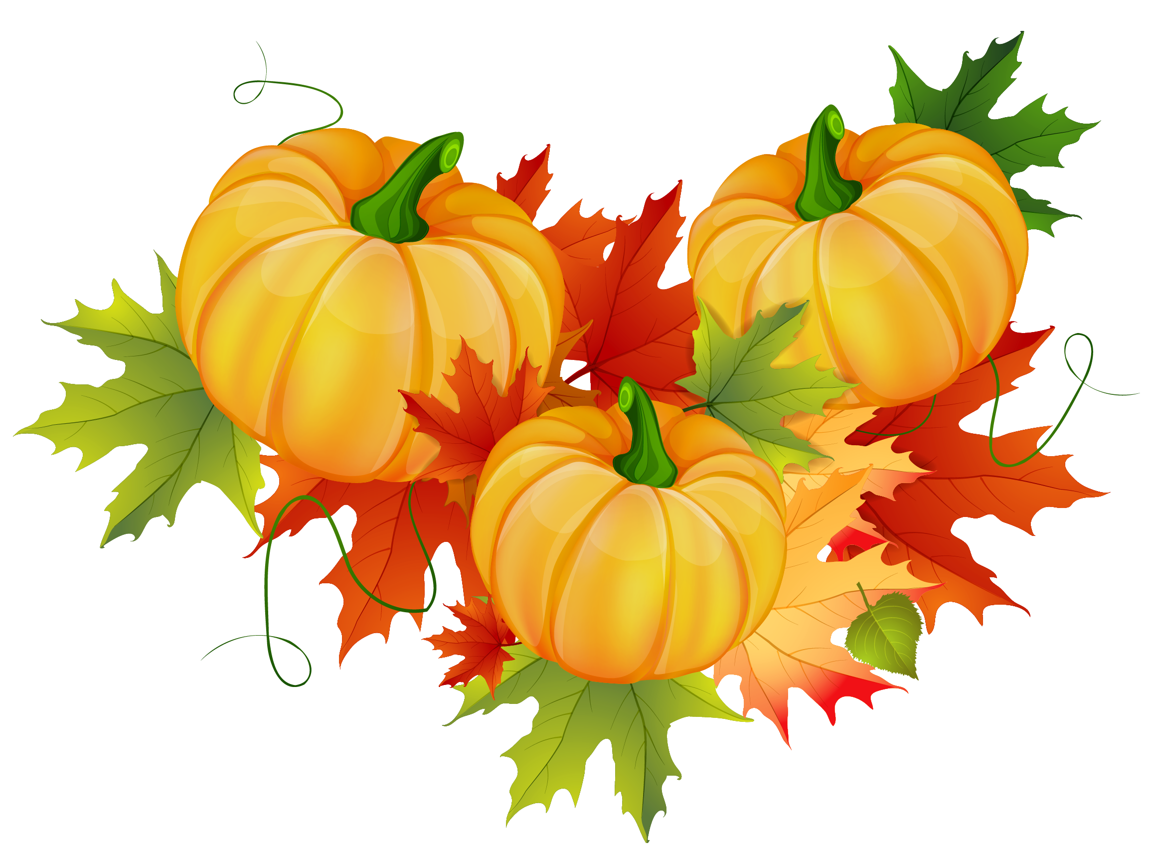 Free clipart for halloween and thanksgiving png free library Thanksgiving Pumpkin Decoration PNG Clipart | Gallery Yopriceville ... png free library